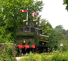 Locomotive 1369 Approaching Buckfastleigh by lezvee