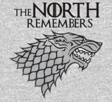 The North Remembers by jamiesonmurphy