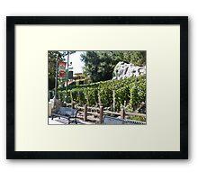 Vineyard California Framed Print