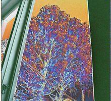 Window Tree V by taudalpoi