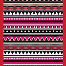 Aztec Pack 2 by racPOP Cases