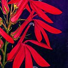 Cardinal Flower - Watercolor Pencil by M Rogers