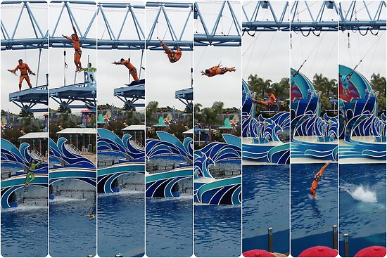 Sea World Jump (1) by shoshgoodman
