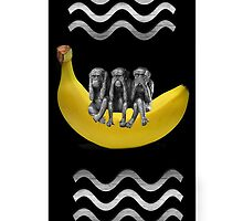 ❤‿❤SEE NO EVIL HEAR NO EVIL SPEAK NO EVIL MONKEY IPHONE CASE❤‿❤ by ✿✿ Bonita ✿✿ ђєℓℓσ