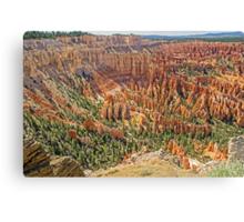 Hoodoo View, Bryce Canyon , Utah, USA Canvas Print