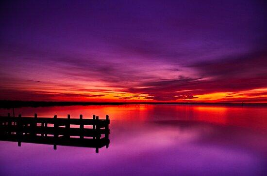 """Swan Bay Serenity"" by Phil Thomson IPA"