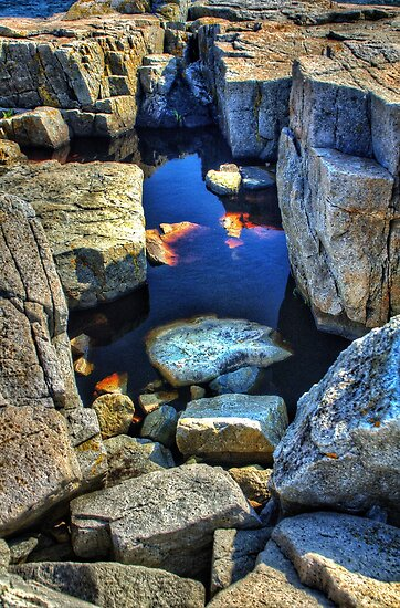 Schoodic Point, Acadia National Park, Schoodic Peninsula, Maine, USA by fauselr