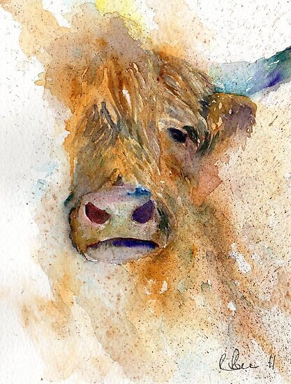 Watercolour Cow by Ruth Nolan