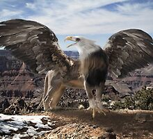 Return of the Gryphon by Randy Turnbow
