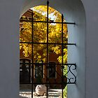 Autumn Through the Fence Window by Georgia Mizuleva