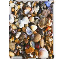 Pebbles & Shells at the Seaside iPad Case/Skin