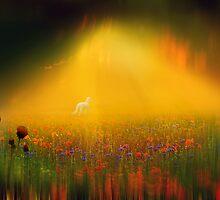 Magic Meadow by Igor Zenin