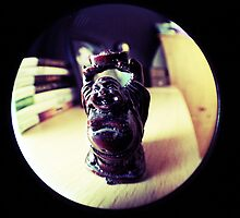 FishEye Photography - Buddha 2 by WilsonClairAmy