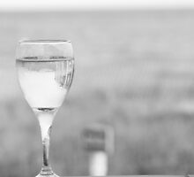 I'll Have a Glass by BarbBPhoto