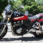 Suzuki GSX 1400 by EmilyWednesday