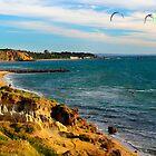 Sandringham Beach  Victoria  Australia by bayside2