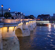 Night on Pont Neuf by karinast123