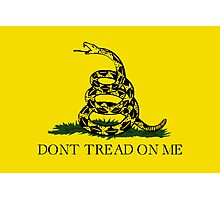 Gadsden Flag Photographic Print