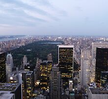 NYC Central Park View at Dusk by FangFeatures