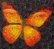 Fruit & Vegetable Butterfly by vexmellon