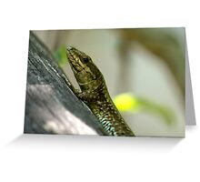small lizard Greeting Card