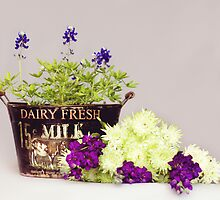 Dairy Fresh Flowers by MWAC