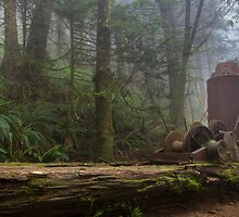 Steam Donkey - West Coast Trail, Vancouver Island, Canada by Phil McComiskey