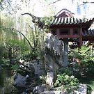 Chinese Gardens by Judy Woodman