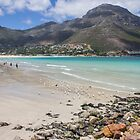 BEAUTIFUL BEACH IN SOUTH AFRICA 01 by danvar