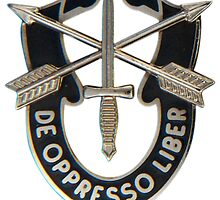 Special Forces insignia by jcmeyer