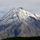 Mt Taranaki close up by sarah ward