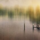 Pond of Silence by Photofreaks