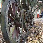 Old wheels by Steve9