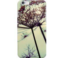 summer's simple taste iPhone Case/Skin
