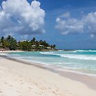 BARBADOS BEACH 03 by danvar
