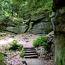 Cuyahoga Valley National Park, The Ledges by Debbie  Maglothin