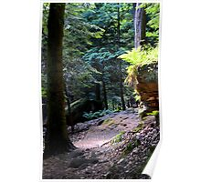 Cuyahoga Valley National Park, The Ledges 2 Poster