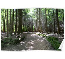 Cuyahoga Valley National Park Trail Poster