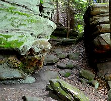 Cuyahoga Valley National Park 4 by Debbie  Maglothin