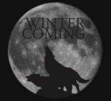 Winter is Coming by MrPeterRossiter