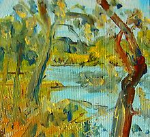 The Goulburn River at Seymour VIC Australia by Margaret Morgan (Watkins)