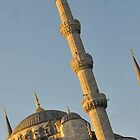 Blue Mosque by Louise Fahy