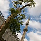 Blue Mosque Citadel by Louise Fahy