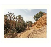 oasis of the desert Art Print