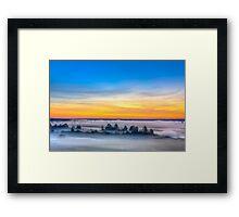 Beautiful Forest On Sunrise Framed Print