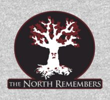 The North Remembers by Cimoe