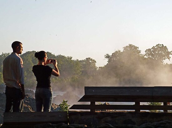 Trying to catch the morning fog by Bine
