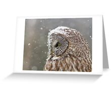 Lapland Profile Greeting Card