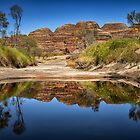 Purnululu Reflections by Mieke Boynton