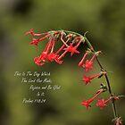 Psalms 118:24 by rjorg